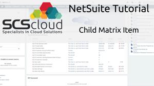 NetSuite Tutorial - Child Matrix Item
