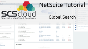 NetSuite Tutorial - Global Search