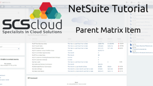 NetSuite Tutorial - Parent Matrix Item
